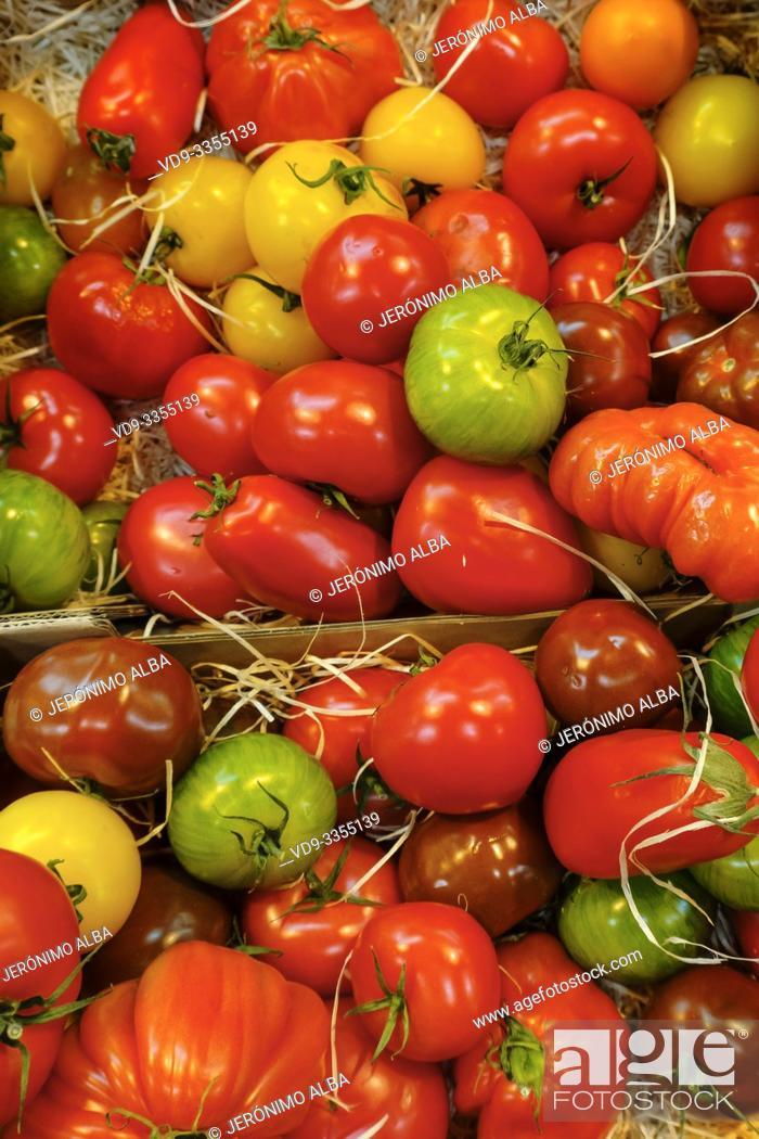 Stock Photo: Various tomatoes. Marché des Capucins market. Bordeaux, Gironde. Aquitaine region. France Europe.