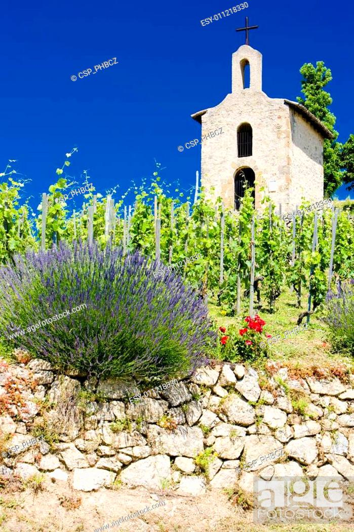 Stock Photo: grand cru vineyard and Chapel of St. Christopher, L�Hermitage, Rh�ne-Alpes, France.