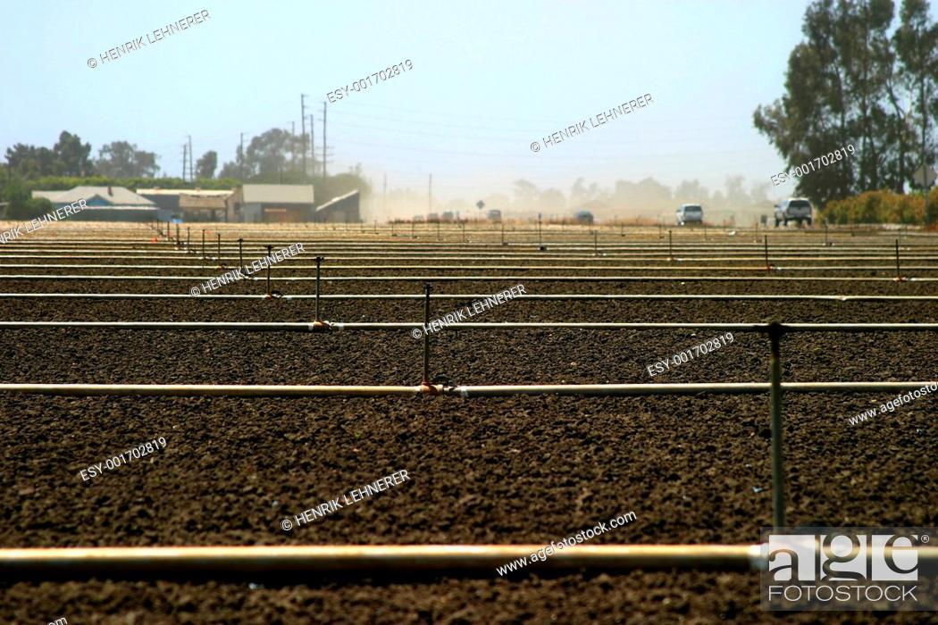 Stock Photo: empty field.