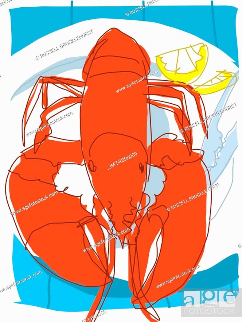 Stock Photo: lobster dinner.