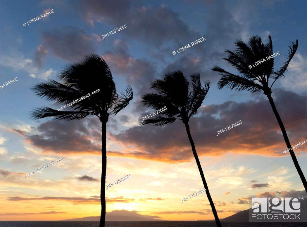 Stock Photo: Kamaole One and Two beaches, Kamaole Beach Park; Kihei, Maui, Hawaii, United States of America.