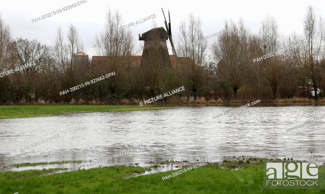 Stock Photo: 12 February 2020, Mecklenburg-Western Pomerania, Rostock: On a meadow a small lake has formed after the continuous rain of the past days and weeks.