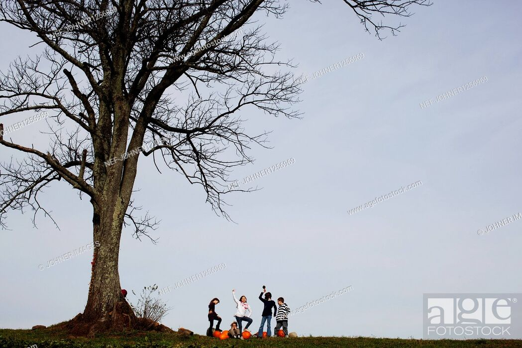 Stock Photo: Five children having fun under large tree.
