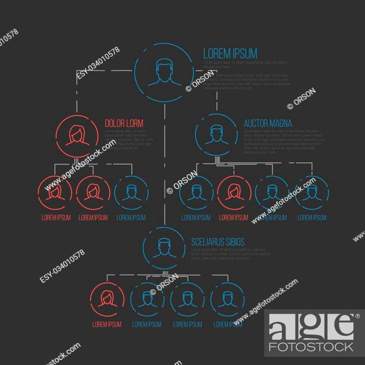 Stock Vector: Company management hierarchy schema template with thin line profile icons - dark version.