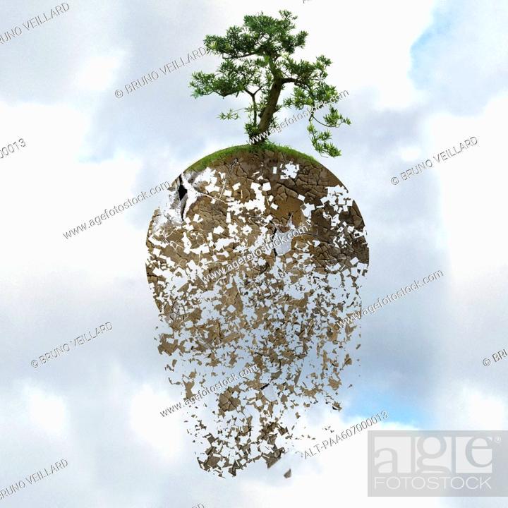 Stock Photo: Deforestation threatens the global environment.