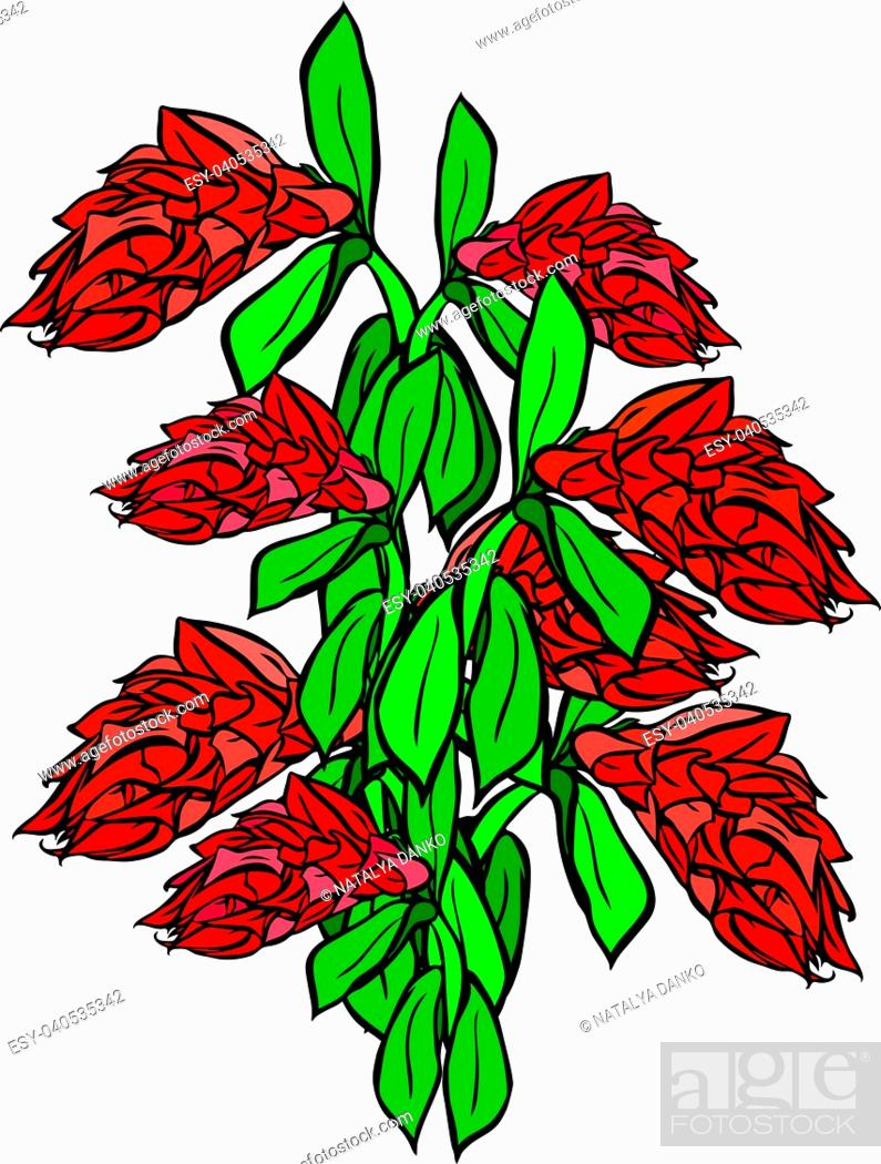 Stock Vector: bouquet of red flowers and green leaf isolated on white background.