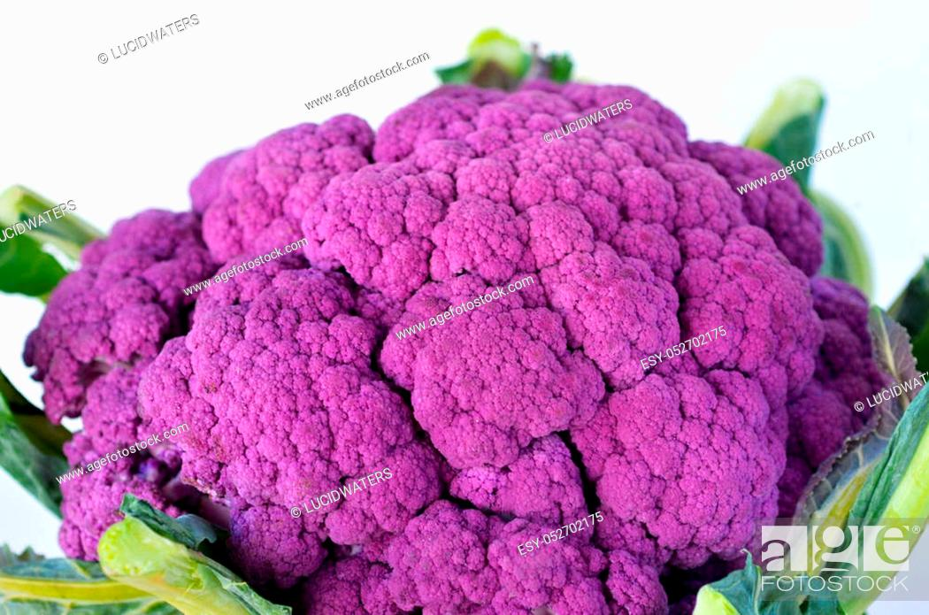 Photo de stock: Purple cauliflower. Food texture and background. Horizontal view.
