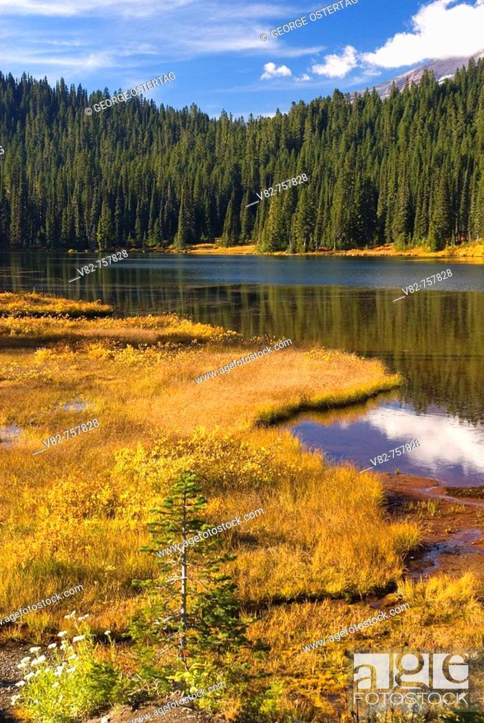 Stock Photo: Reflection Lakes, Mt Rainier National Park, Washington, USA.
