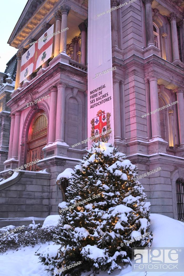 Stock Photo: Canada, Quebec, Montreal, City Hall, Christmas tree,.
