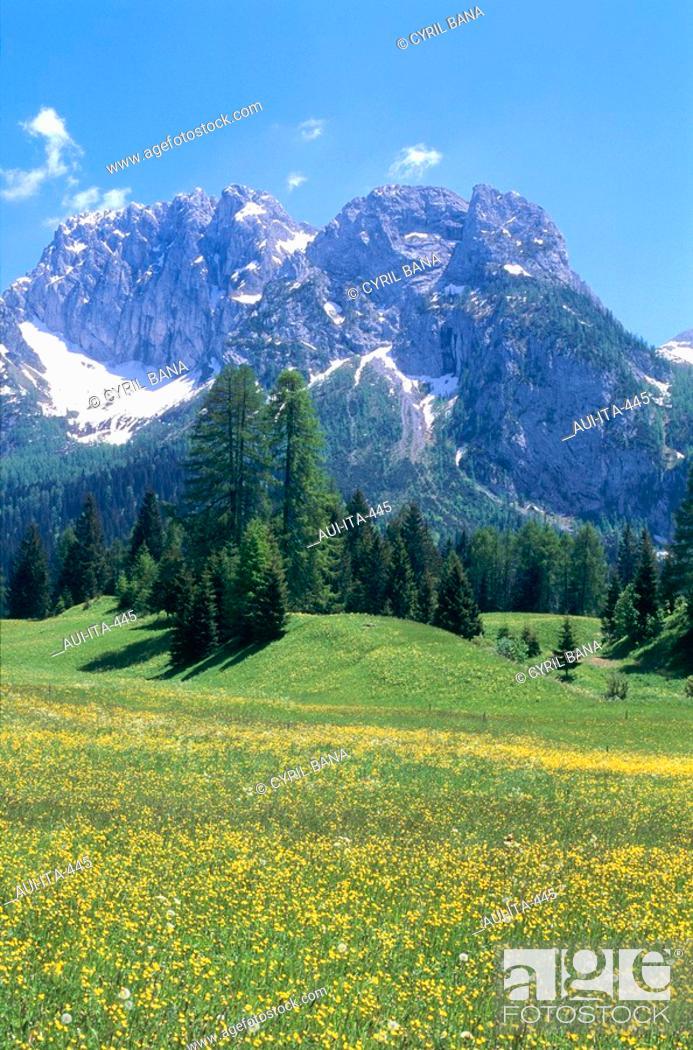 Stock Photo: Italy - Area : Venezia Friuli - The Dolomites - Sappada.