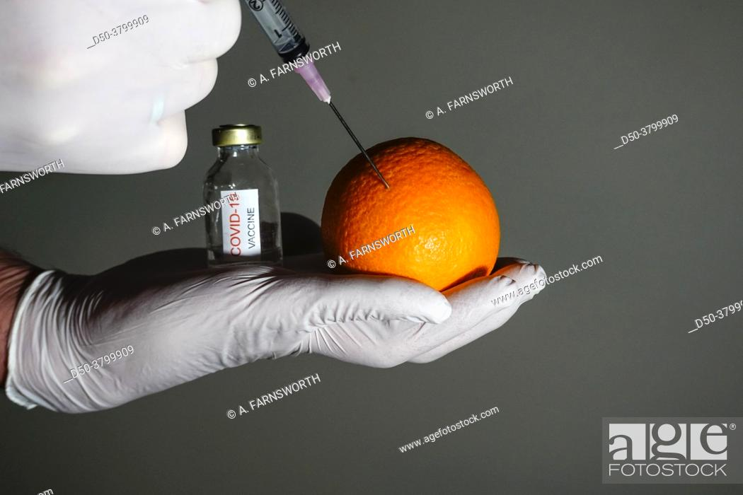 Stock Photo: A Covid-19 vaccine flask and a syringe injecting an orange.