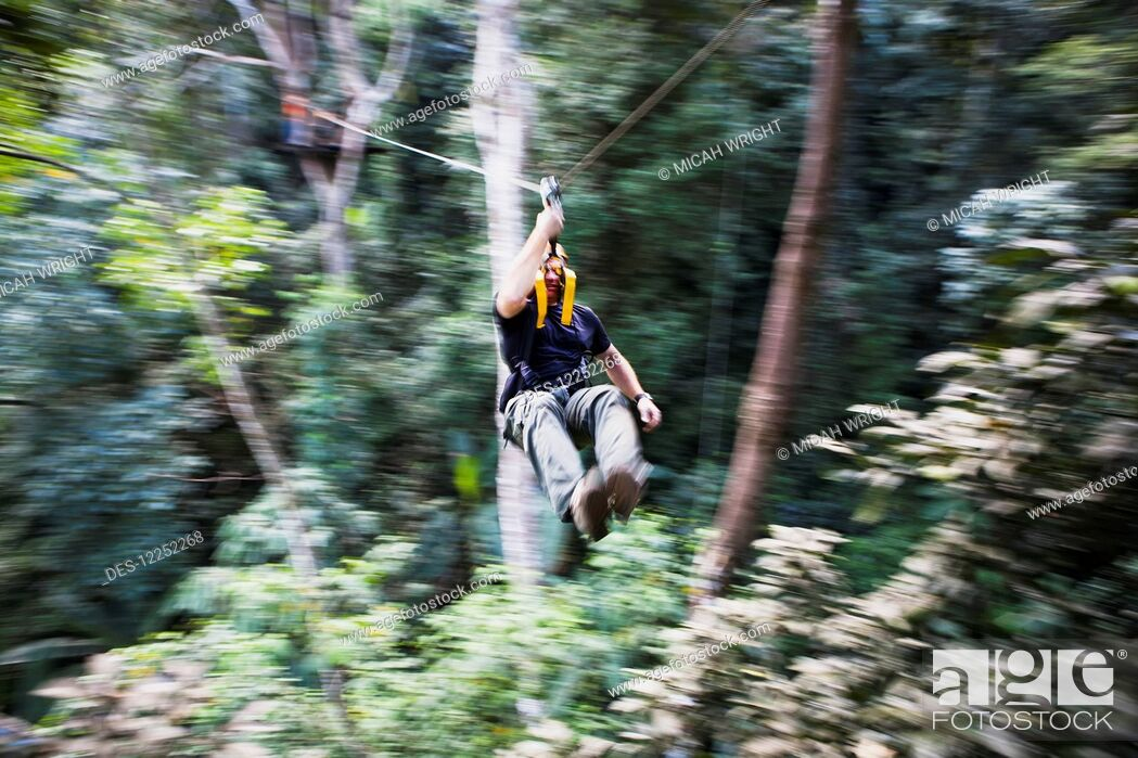 Imagen: The Flight of the Gibbons, one of the most popular tours in Thailand; Chiang Mai, Thailand.