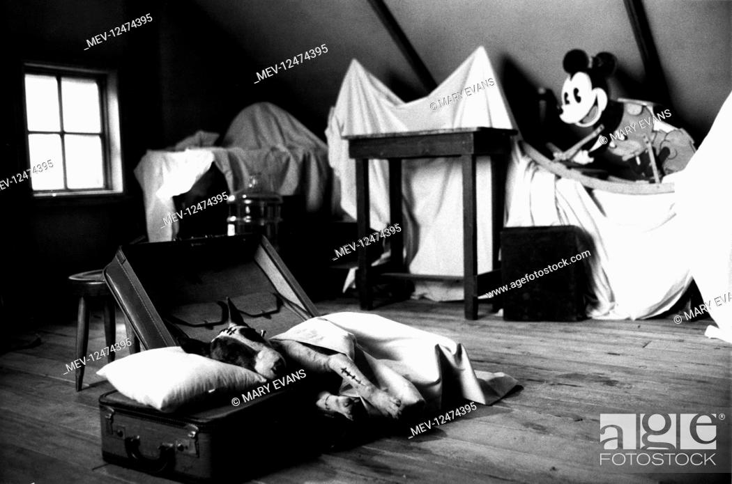 Sparky Mickey Mouse Characters Sparky Film Frankenweenie 1984 Director Tim Burton 01 Stock Photo Picture And Rights Managed Image Pic Mev 12474395 Agefotostock