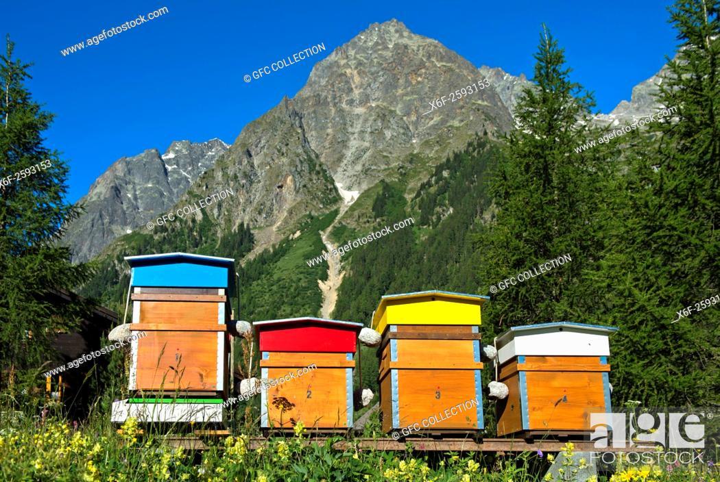 Photo de stock: Bee hives behind peak Pointes des Six Niers, La Fouly, Val Ferret, Valais, Switzerland.