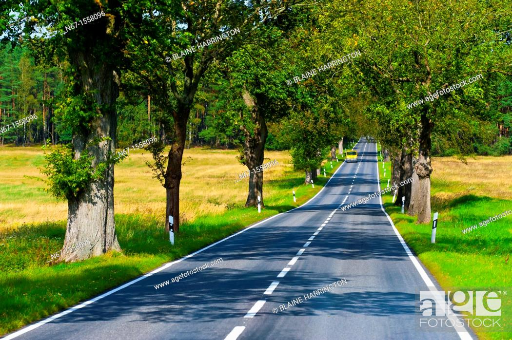 Stock Photo: A country road near Rheinsberg, Germany.