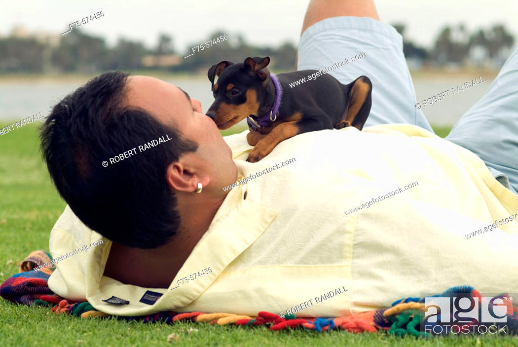 Stock Photo: Man playing with small dog at park in San Diego, CA.