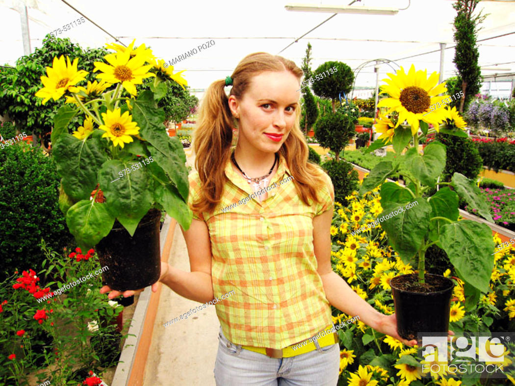 Stock Photo: 27 year old woman in greenhouse with sunflowers.