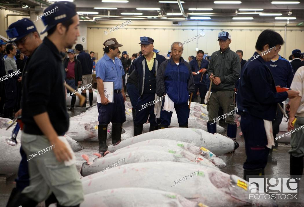 Tokyo, Japan: An auctioneer conducts a tuna fish auction as fish