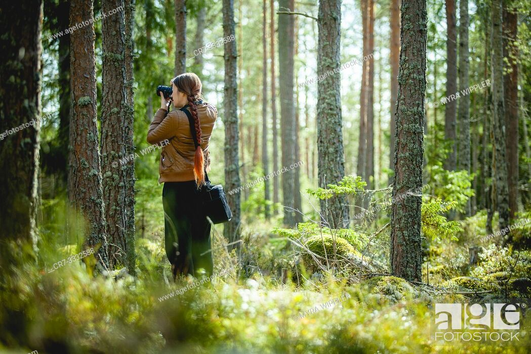 Stock Photo: Girl photographing in a forest in Östergötland, Sweden.