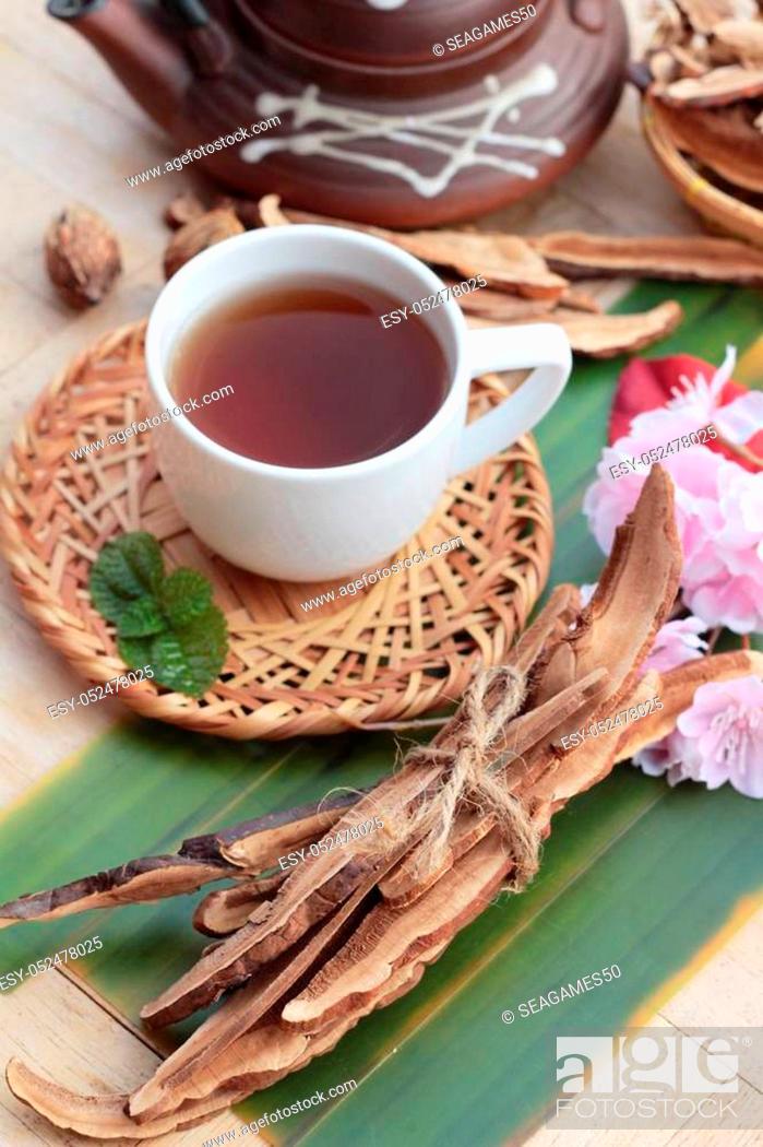 Stock Photo: Lingzhi mushroom tea - Ganoderma lucidum for health.