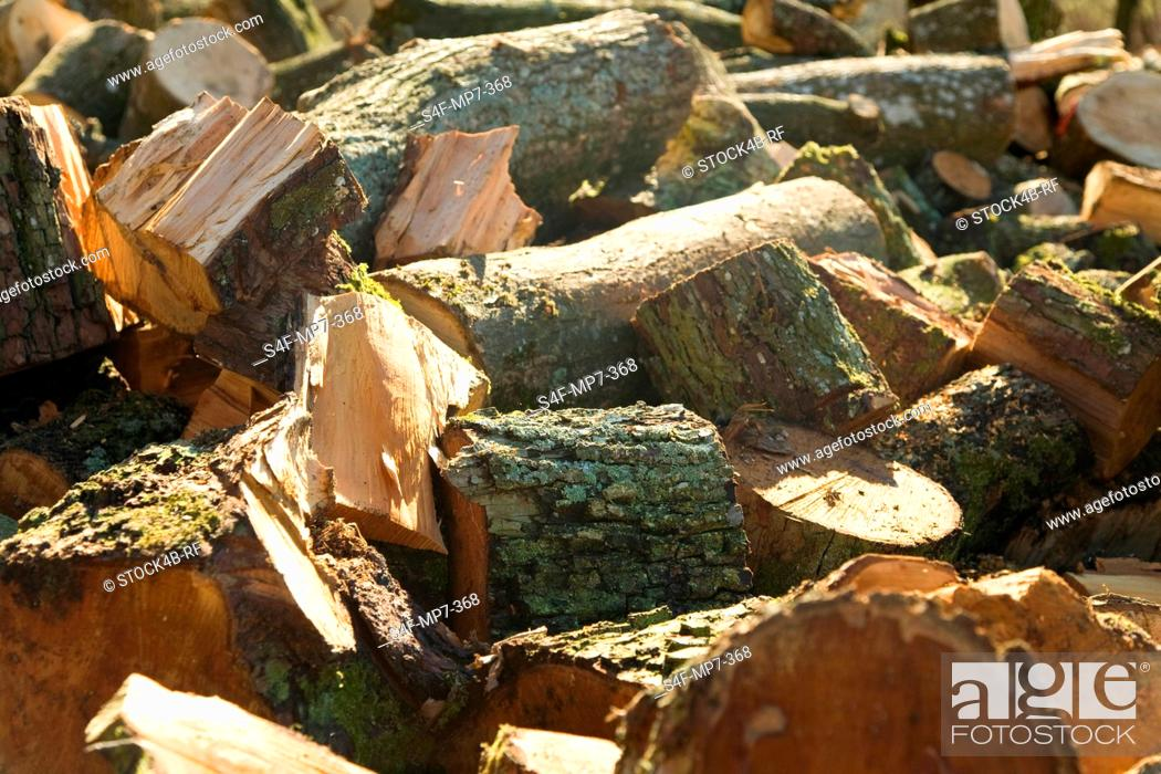 Stock Photo: Detail of logs.