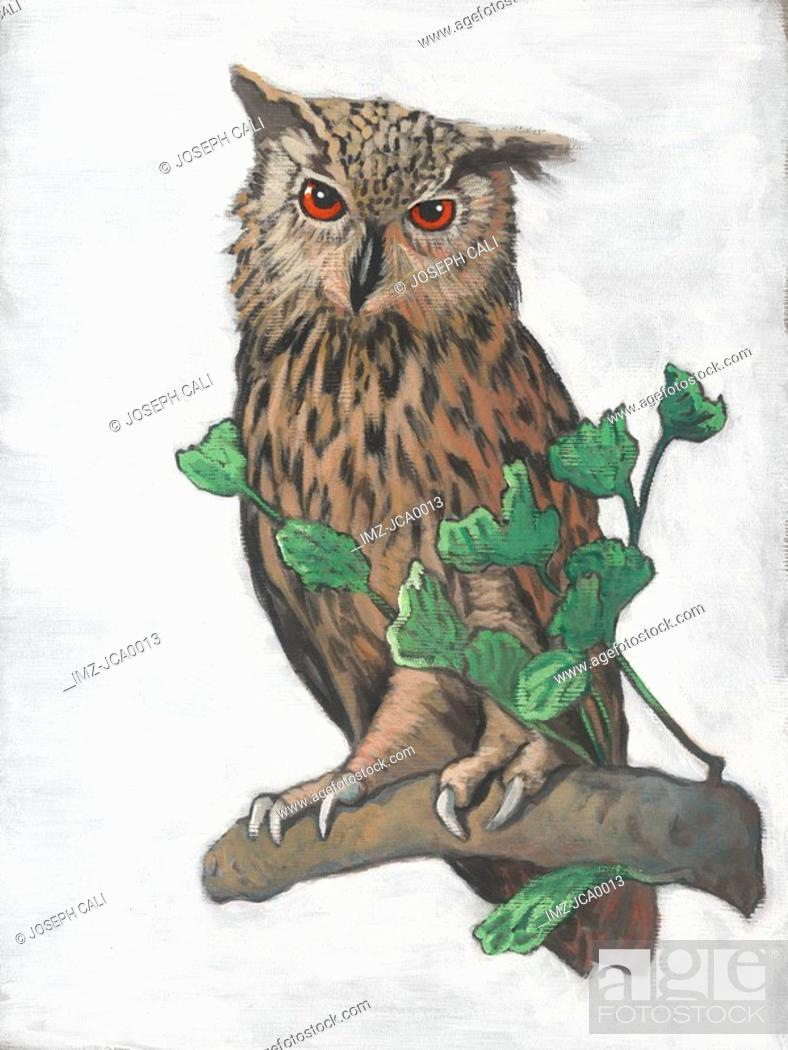 Stock Photo: Illustration of an eurasian eagle owl.