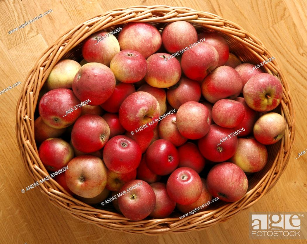 Stock Photo: A basket full of fresh red apples.