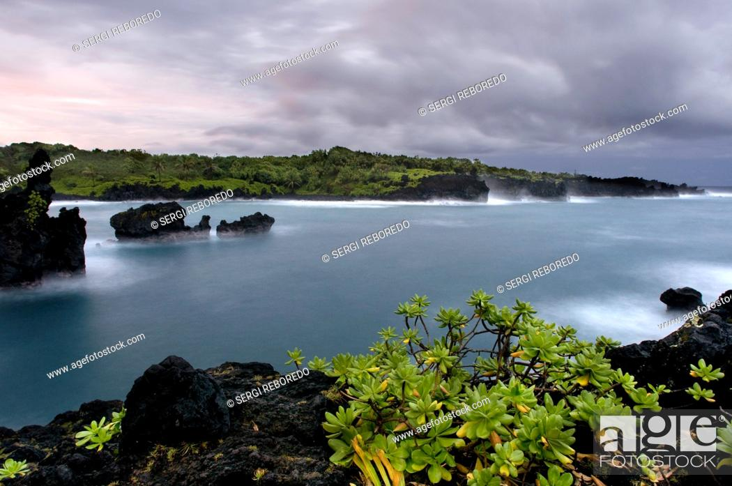 Stock Photo: Wai'anapanapa State Park. A leafy location with sea caves and volcanic cliffs. Hana Highway. Maui. Hawaii. This is a great stop in the Road to Hana.