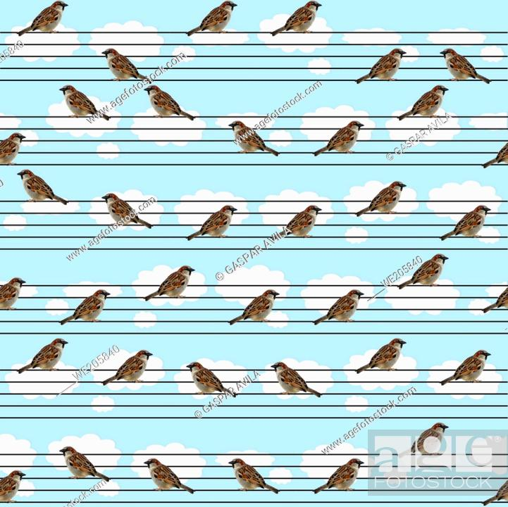 Stock Vector: Music related pattern, with perched sparrows imitating musical notation, on a light blue background. Mixed media digital art pattern.