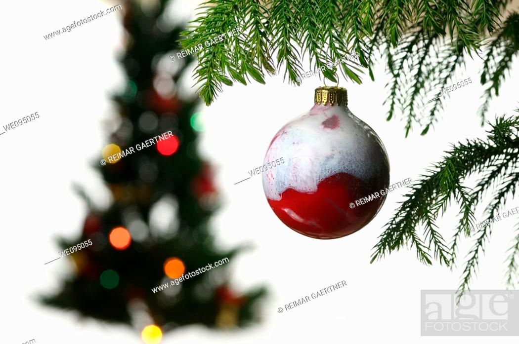 Stock Photo: Close up of a hanging red glass ball ornament with blurred Christmas tree on white.