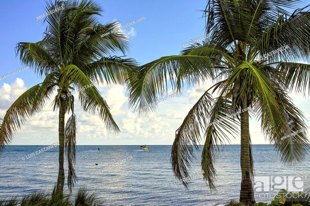 Stock Photo: Biscayne Bay, Miami, Florida, USA.