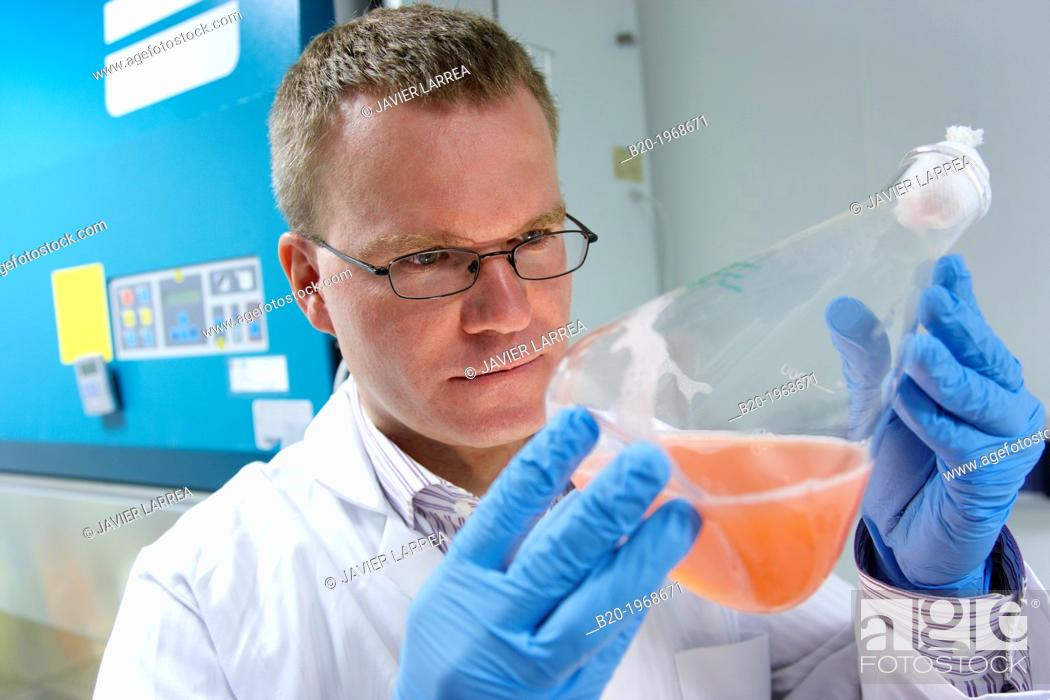 """Stock Photo: """"Growth monitoring of carotenoid-producing yeast by incubation orbital, Cleanroom Microbiology, Biotechnology Laboratory, Health Area, Alava Technology Park."""