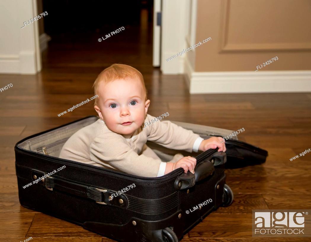 Stock Photo: Infant playing in suitcase on hardwood floor; St. Albert, Alberta, Canada.