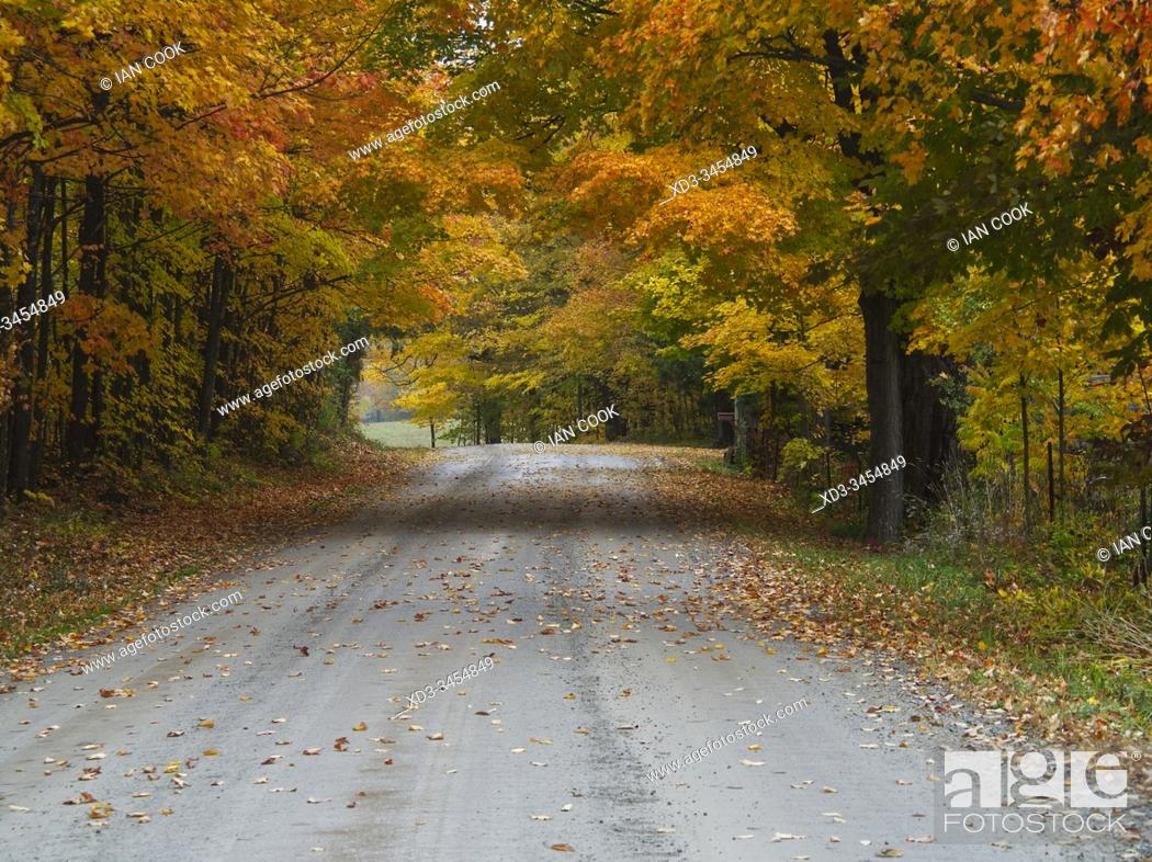 Stock Photo: country road in autumn, near Carleton Place, Ontario, Canada.