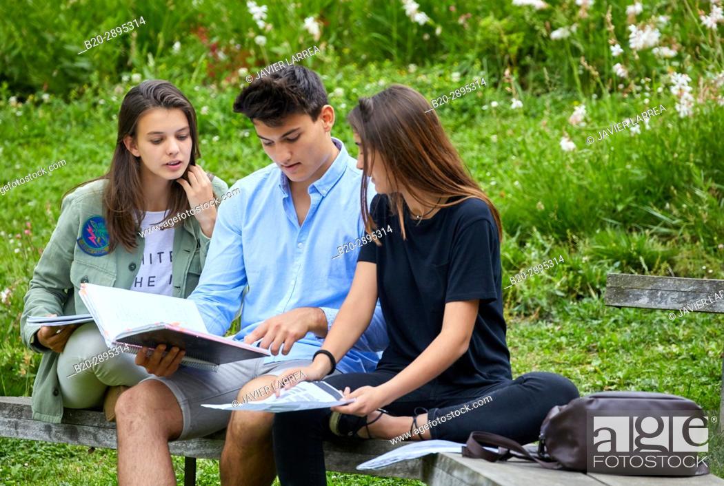 Stock Photo: Students on campus. College. School of Business Studies. University. Donostia. San Sebastian. Gipuzkoa. Basque Country. Spain.