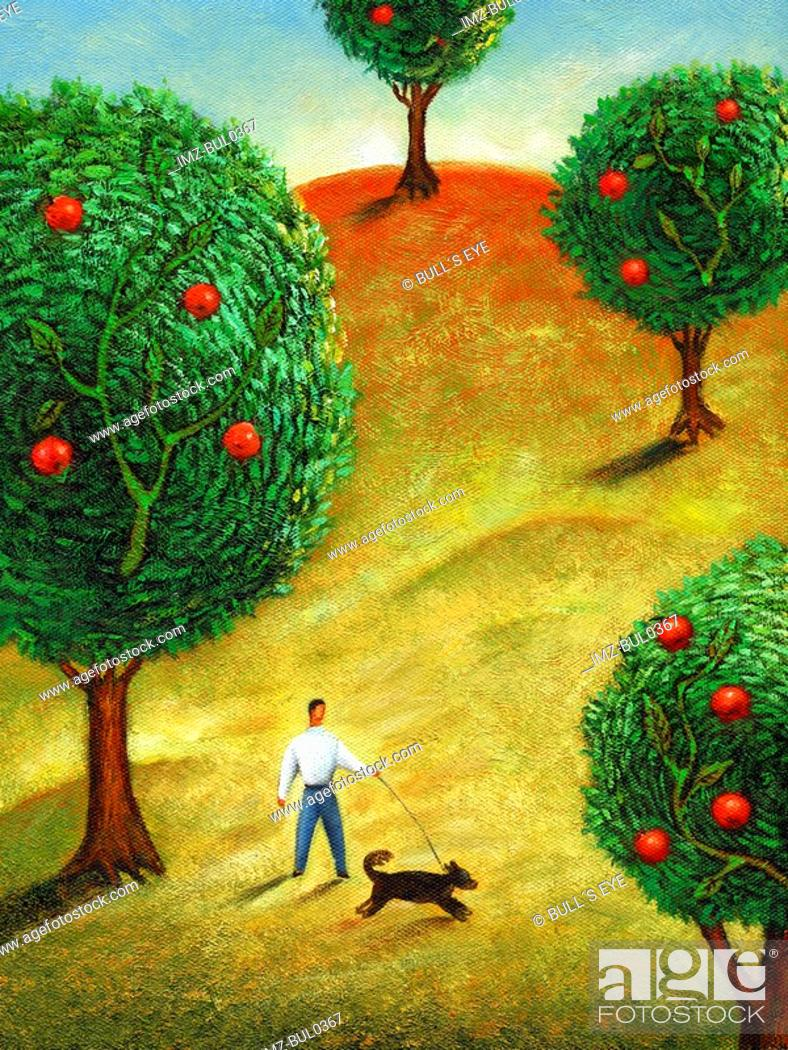 Stock Photo: A man walking his dog in an apple orchard.