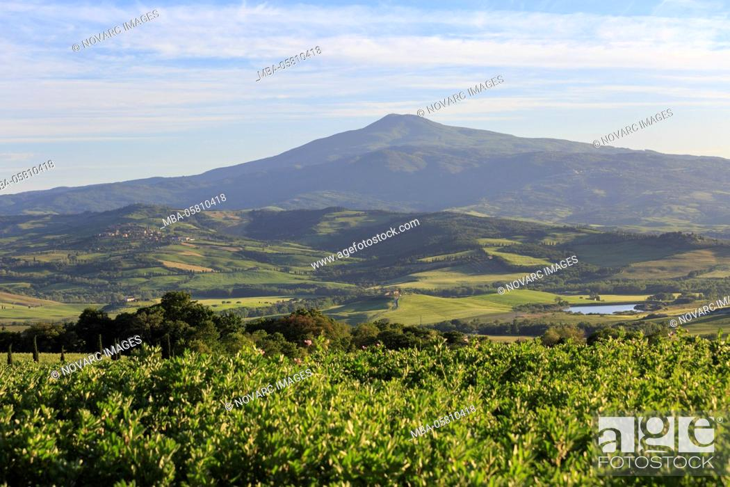 Stock Photo: The landscape of the Val d'Orcia, Tuscany, Italy.