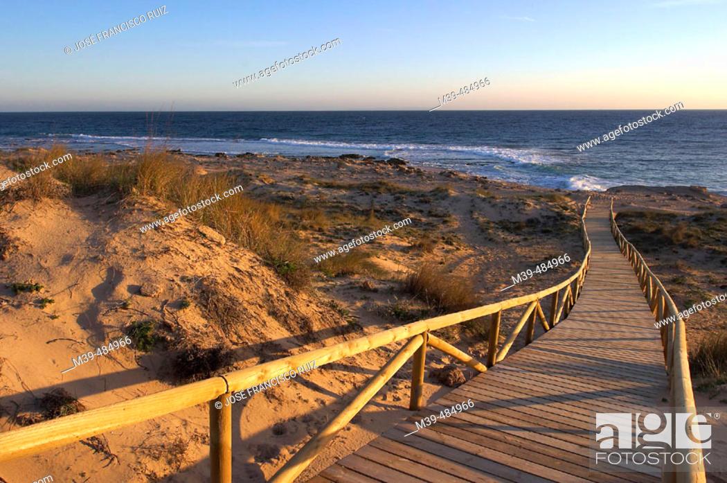 Stock Photo: Trafalgar Cape, beach of Caños de Meca. Cádiz province, Andalusia, Spain.