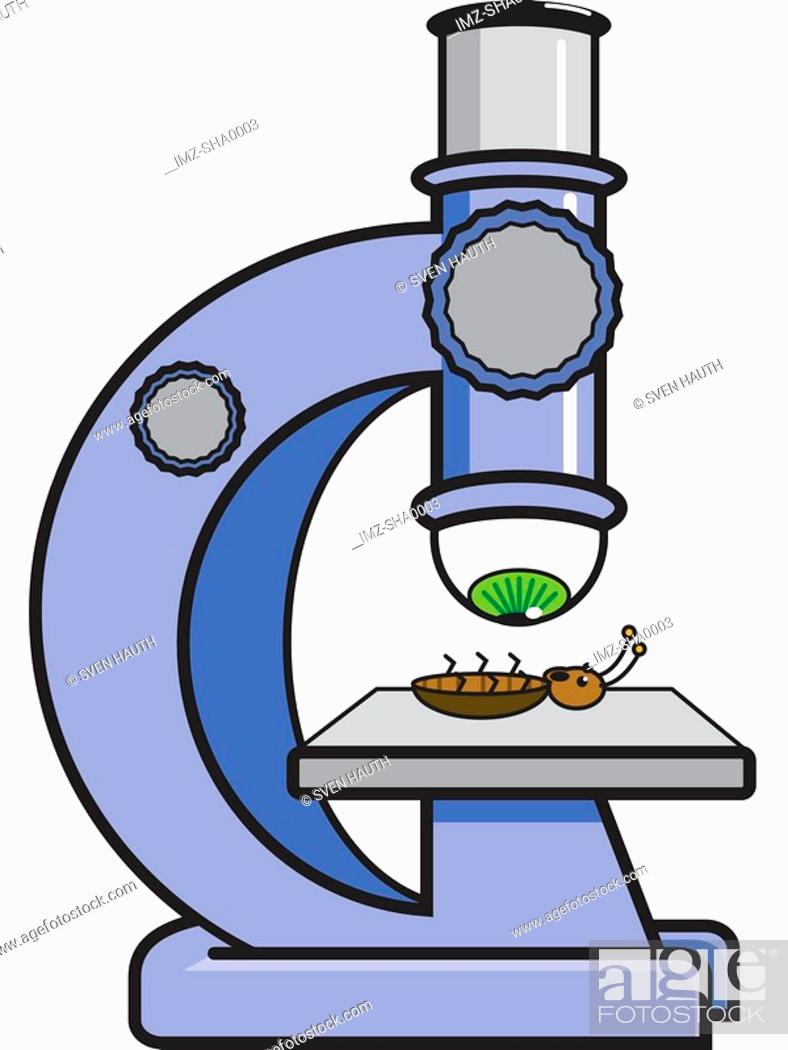 Stock Photo: A microscope studying a bug.