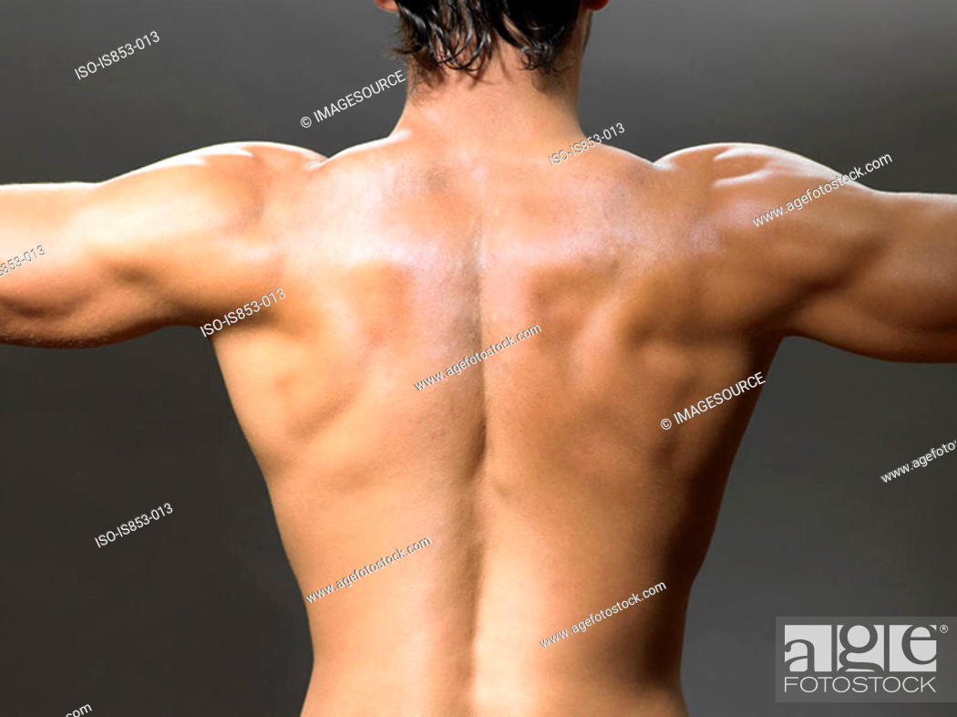 Stock Photo: Rear view of a man.