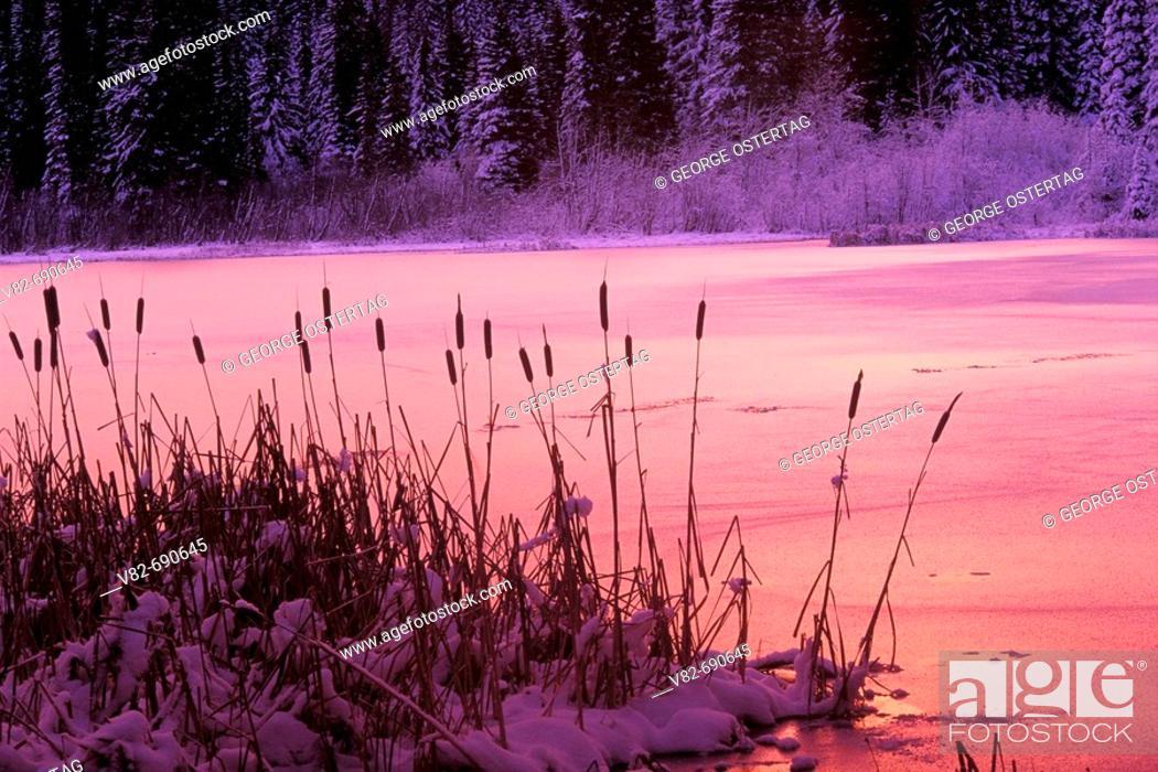 Imagen: Lake Ann, Mt Jefferson Wilderness, Willamette National Forest, Oregon, USA.