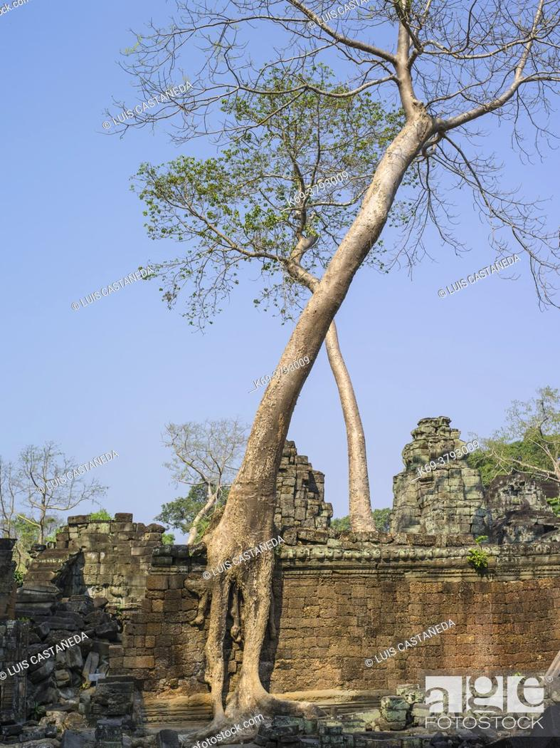 Stock Photo: Preah Khan, sometimes transliterated as Prah Khan, is a temple at Angkor, Cambodia, built in the 12th century for King Jayavarman VII.