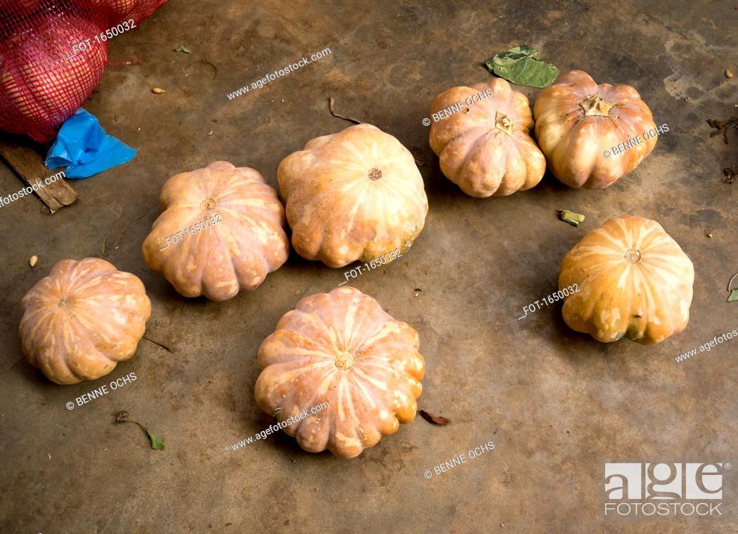 Stock Photo: High angle view of fresh pumpkins on floor.