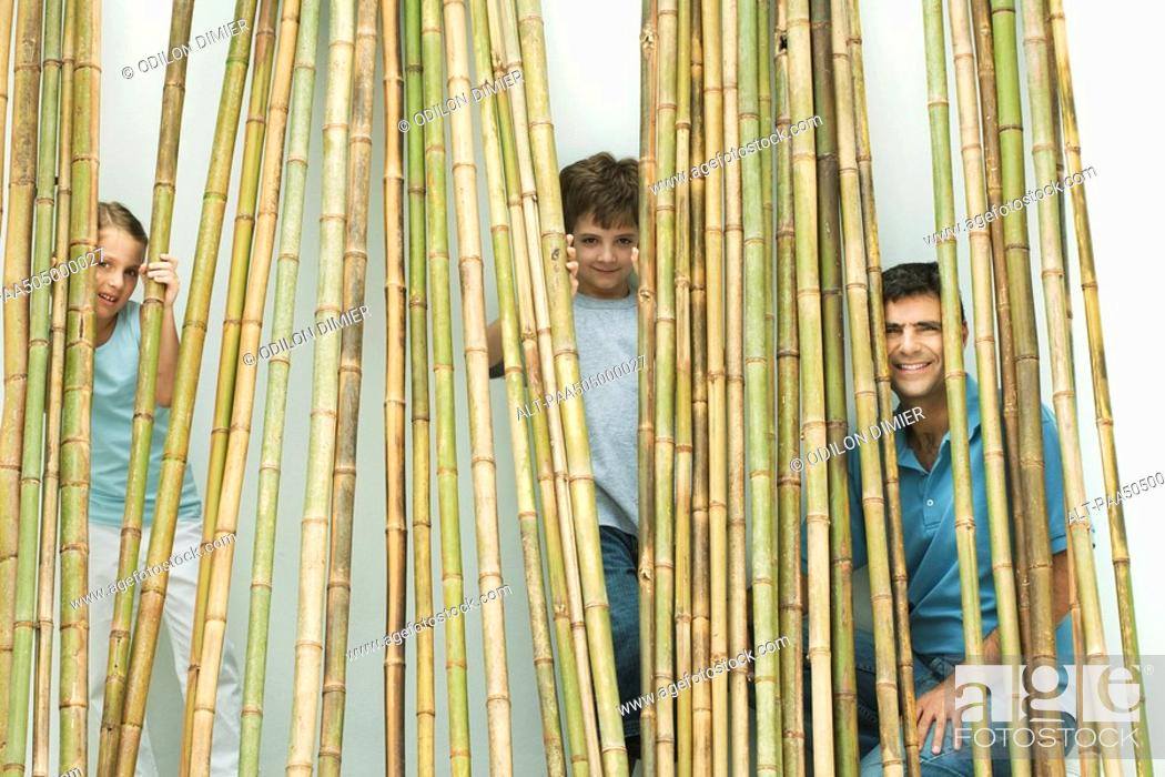 Stock Photo: Father and two children peeking through bamboo at camera, all smiling.