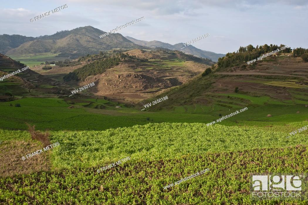 Stock Photo: Landscape near Korem ( Tigray state, Ethiopia). Korem and its surroundings became famous during the 1984-1985 famine as the worst hit place.