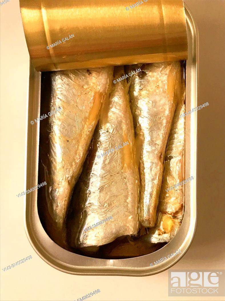 Stock Photo: Tinned sardines.