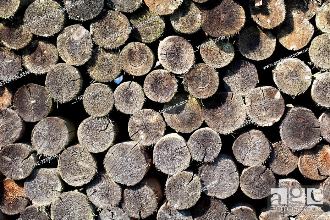 Stock Photo: Old woodpile.