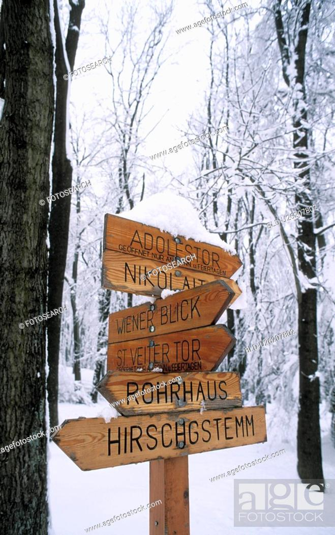 Stock Photo: Wooden village signs.