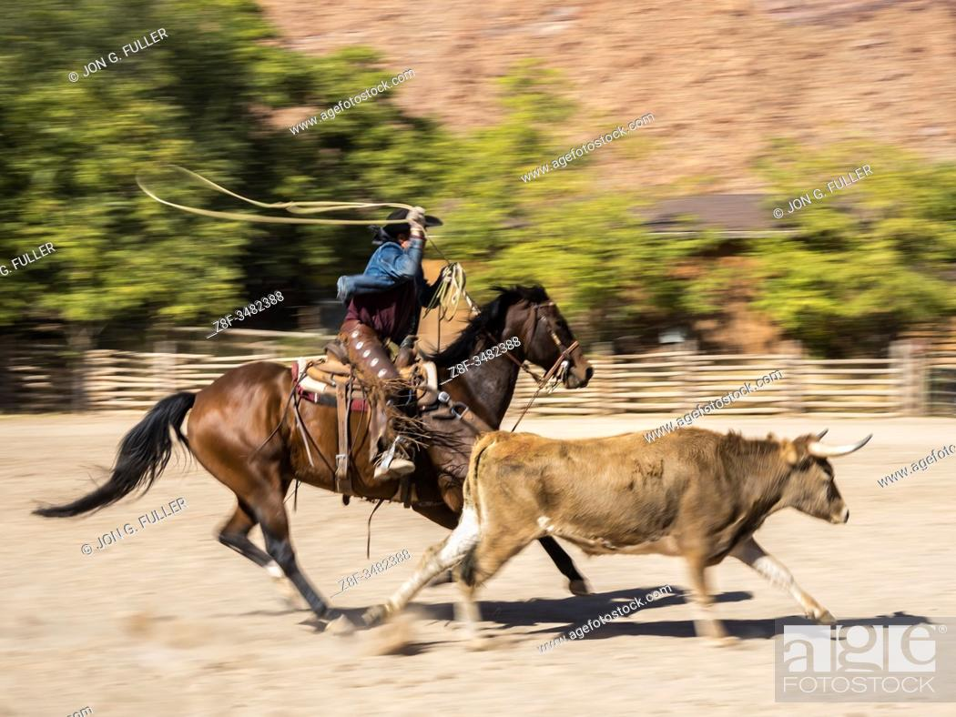 Imagen: A slow shutter speed produces motion blur and conveys a sense of speed when photographing a cowboy roping a longhorn steer on a ranch near Moab, Utah.
