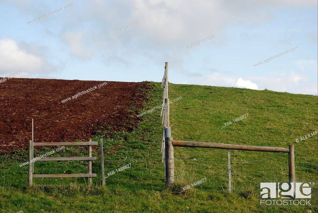 Stock Photo: Two farm paddocks illustrate idea the grass is always greener on the other side.